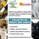 les_chachous_de_chacha_flyer_collecte_v3-images